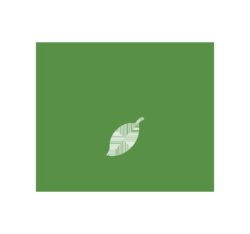 stockfamily-ico-automobili